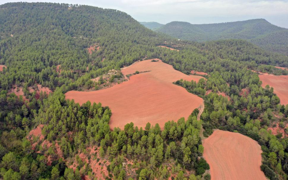 Finca rústica agrícola con masía en Artés (Bages)