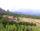 Finca rústica con masía en Vilanova de Sau (Vic-Osona)